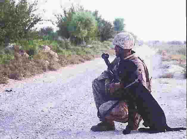 A solider on a gravel top road with his working dog